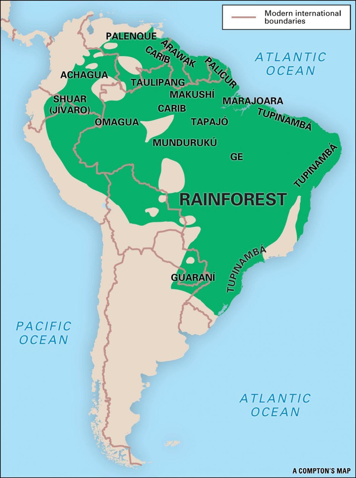 Mapa Do Brasil Floresta Amazônica Mapa Da Floresta